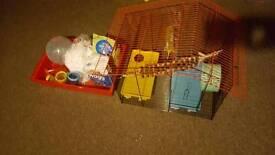 Hamster cage set