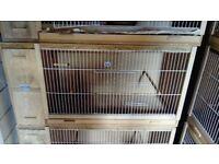 Bird breeding box budge canary or finch