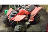 Adult quad bike