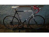 Raleigh Winner Road Bike