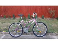 LADIES YOUTH TEENAGE RALEIGH 24 INCH WHEEL 16 INCH FRAME 18 SPEED BIKE BICYCLE