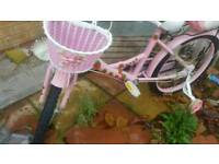 Cheap bicycle for girls 20 inch