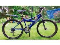 "Raleigh Badd Max HT Mountain Bike 22"" Frame"