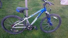 Apollo XC24 Mountain Bike