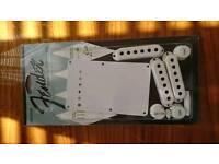 Fender Genuine Pure Vintage 1954 Stratocaster Accessory Kit