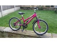 Ridgeback girls mountain bike