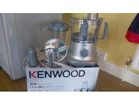 Kenwood true food processor