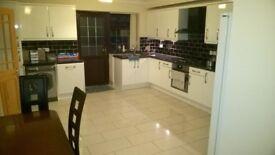 Large single room £90 per week