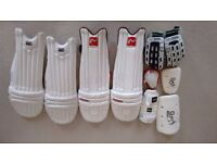 Cricket Accessories in very good condition