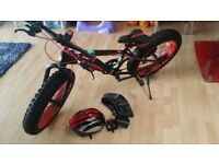 Sport Bicycle New fashion phat boy tires