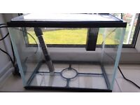 small fish tank with heater and pump/filter