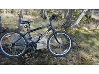 Boys Dunlop bike