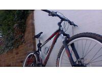 BH Spike Mountain Bike