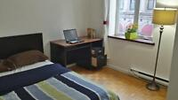 Nice bright room in the old port Montreal