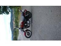 Harley Davidson 1200 Sportster 1995. Full MOT