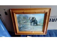 Medium sized framed elephant print