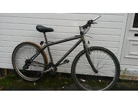 RALEIGH ATB BIKE WITH LOCK AND LIGHTS - MEDIUM SIZE £40