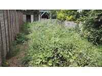 Overgrown Garden? Looking like a Jungle? I'm here to help! 074 4903 3357