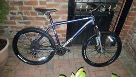Voodo mountain bike in gloss blue