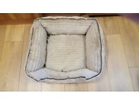 Used Small Dogs bed & retractable lead