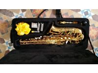 ELKHART 100AS Saxophone & case. Excellent condition as hardly used.