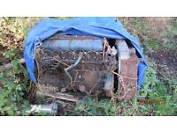 diesel engine /perkins