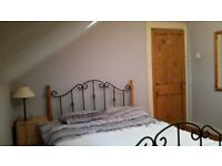 Lovely room in perfect house on Ormeau Road