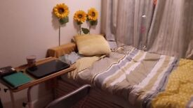 Small single room £370 p/m Bills included