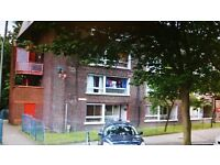 LOVELY 2 BEDROOM PURPOSE BUILT FLAT AVAILABLE IN GAUNGTLET, FIVE ACRES, NW9 5YP