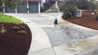 Widesky garden & landscaping