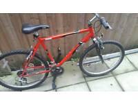 Raleigj mountain bike