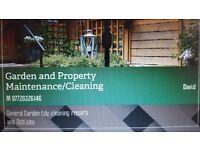 Retired Proffesional offering Garden maintenance £10PH