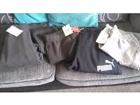 Bnwt ( joggers, shorts, tracksuit)