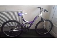 Sabre Shimmer Mountain Bike