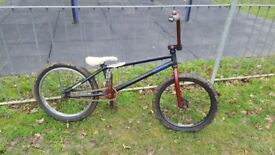 Bmx bike (wethepeople)