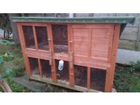 Rabbit Hutch, Run, (Indoor/transit cage & more if required)