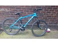 Scott hardtail bike.