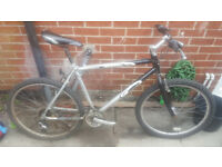 carrera mountain bike £10