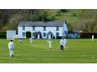 White Coppice CC - cricket players wanted