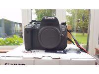 Canon 700D DSLR - 18-55mm Kit Lens + EF 50mm f/1.8 STM + EFS 24mm f/2.8 STM