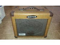 Acoustic guitar amplifier