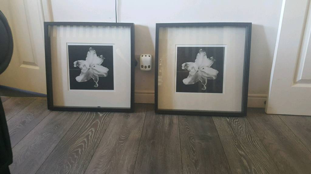 2 nice wall art decorations in black and white | in Glasgow | Gumtree