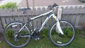 Forme Sterndale mountain bike