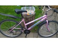 Ladys bike, all working fine £30 Throsk