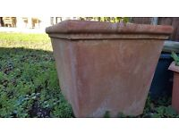 Very large terracotta plant pot