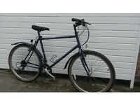 MANS RALEIGH HYBRID BIKE- £60