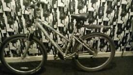 Lady's Mountain Bike, Raleigh