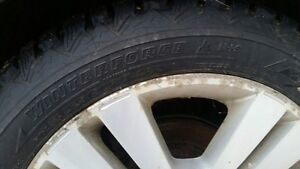 Winterforce studded tires