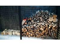 Pre cut firewood logs