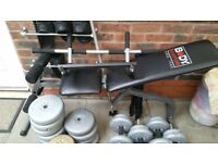 Collection of weights + bench